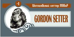 Гордоны МООиР